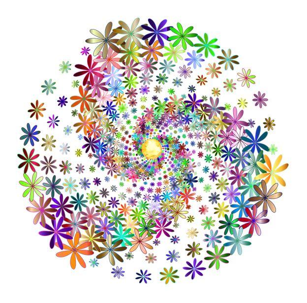 Spirale fleur soleil