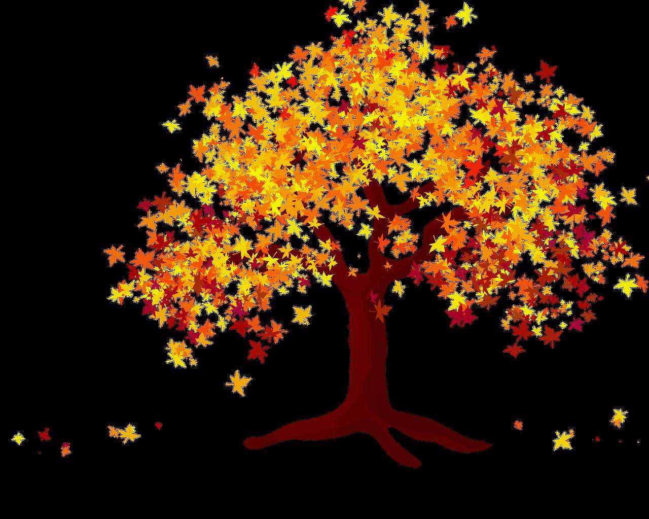 Tree 4565394 1280